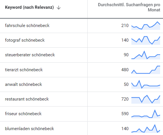 online marketing schoenebeck suchbegriff-analyse
